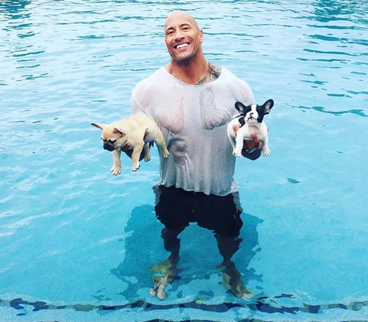 Dwayne johnson rescat a su peque o cachorro que cay a for Piscina el guerra