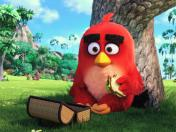 Angry Birds: Sony Pictures estrena trailer de nuevo filme (VIDEO)
