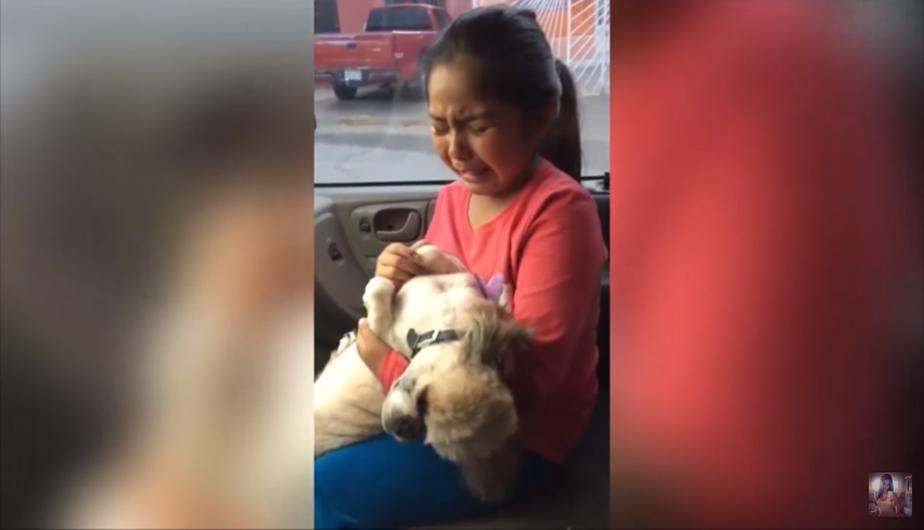 YouTube Video Viral: niña lloró descontroladamente por el corte de su perro. (foto: captura YouTube señorita x)