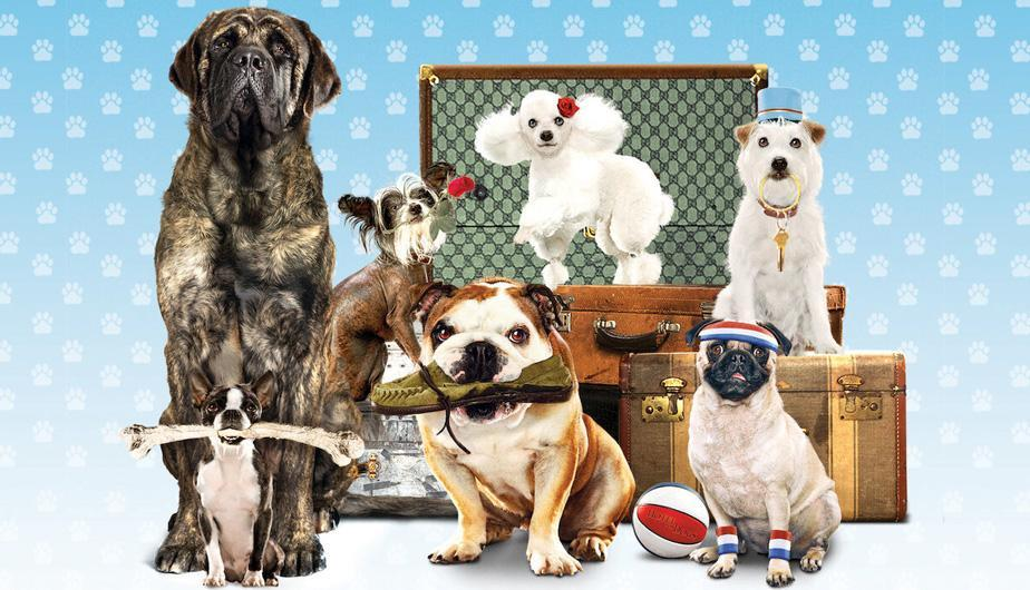 Hotel para Perros. (Foto: DreamWorks Pictures/Nickelodeon Movies)