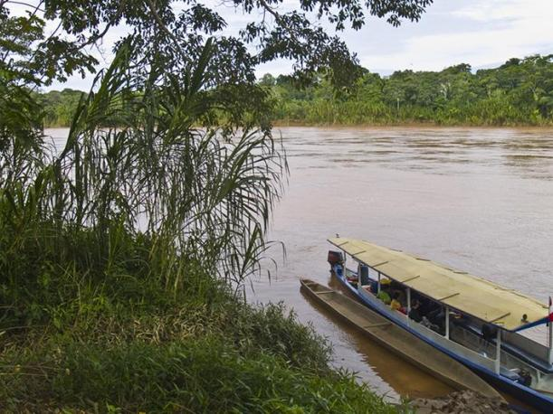 Tambopata. (Foto: Flickr James Stevenson)